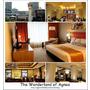 【2014澳門】旅宿。實惠住宿4星級Holiday Inn金沙城中心假日酒店