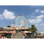 佳佳愛旅遊-搭電車玩沖繩來看佳佳四天三夜怎麼安排?
