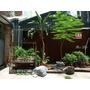 【TRAVEL】台南中西區|懷舊台南之旅 #住宿。彷彿住進美國影集裡的單身公寓|正興延平公寓