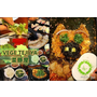(台中西區)VEGE TEJI YA 菜豚屋 台中店│來自日本的韓式燒肉__愛評體驗團