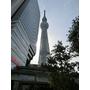 日本東京晴空塔&新宿高島屋百貨歌舞伎町,逛不停的日本超好玩~