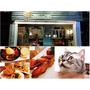 【台北東區】台北大安區超療愈貓咪餐廳<貓咪先生的朋友>二訪|9月即將歇業
