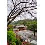 【日本,九州,佐賀】祐德稻荷神社,據說祈求生意興旺與戀愛超靈驗的地方。(同場加映和服體驗與當地限定的祐德羊羹(鞭炮羊羹)