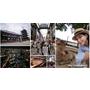 【大阪自由行】Mus的5天4夜大阪懶人遊~環球影城、心齋橋、道頓崛、奈良公園、浪漫夜景(上篇)