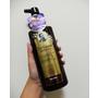 美髮|韓國熱賣Dr. Groot養髮秘帖-強健您的髮根