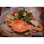 [新竹美食] EISEN bistro 艾昇義式餐館 || 巨城附近美食推薦::工業風格現代質感 義式創意料理餐酒館