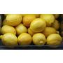 你想像不到的便宜好物—檸檬
