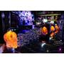 【羽諾食記】『黑風寨搖滾酒食文化』❤東區 搖滾音樂主題餐酒館