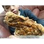 【新北三重區】 三重美食『炸功夫脆皮鹽酥雞-三重重陽店』原味雞排/蜜汁雞排/近三重稅捐處