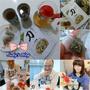 <保養。保健>台灣茶人-刀豆茶,切油斬臭讓你擁有好口氣,身體更健康~*