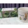 【❤飲食健康】『チラコル菠菜萃取健康茶』豐富的營養價直讓妳體內環保擁有完美身型!