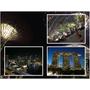 【遊記】我的夢幻蜜月啟程 * 新加坡 濱海灣花園 & Singapore Flyer景觀摩天輪