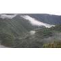 【高雄景點】羅木斯(羅木斯溪)步道,推薦山林裡試乘車4WD的秘境!