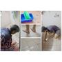 【好師傅居家清潔】到府施工 隱形止滑地板,立即就讓浴室廁所防滑成效大增!