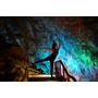 重慶旅遊推薦▋芙蓉洞~令人驚豔、炫麗奪目的天然藝術宮殿,世界三大洞穴也是中國最美的鐘乳石洞