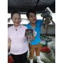 (360行向前衝) 台灣雪蛤王 ~ 想賺錢得先學會養牛蛙! (每週六21點請鎖定非凡電視台)