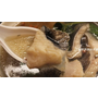 i3Fresh。海鮮宅配。愛上新鮮。價格划算優惠。輕鬆料理無負擔。