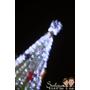 [DIY黑卡]拍出不一樣的聖誕星芒