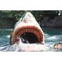 ▋日本大阪▋環球影城~驚奇有趣的大白鯊