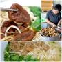 ▋新竹美食▋揭家牛肉麵~口味清淡的超人氣牛肉麵