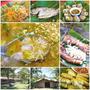 ▋台東美食▋東河.東河部落午餐(瑪路阿瀧部落)~水母羹古溜口感很特別