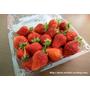 吃草莓,心情好~