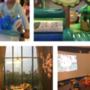 [彰化ღ親子餐廳] (2Y5M11D)室內氣墊溜滑梯、小型旋轉木馬,近500坪像飯店一樣的親子餐廳─嘚嘚茶語共和複合式餐飲彰化員林旗艦館